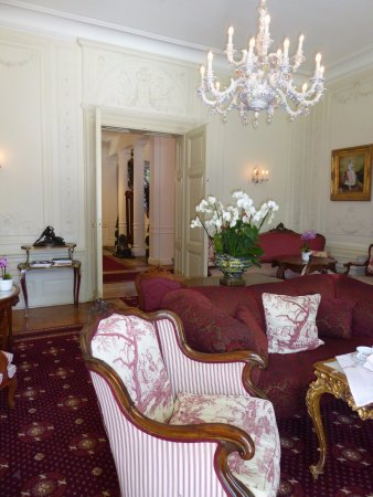 Hotel Belle Epoque: Fire place room