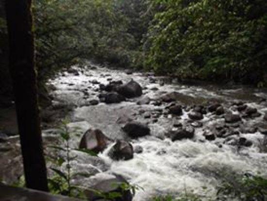 Parc National, Guadalupe: environnement face à la cascade