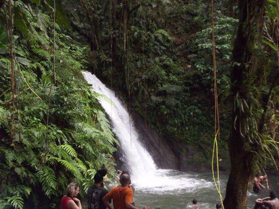 Parc National, Gwadelupa: La chute d'eau