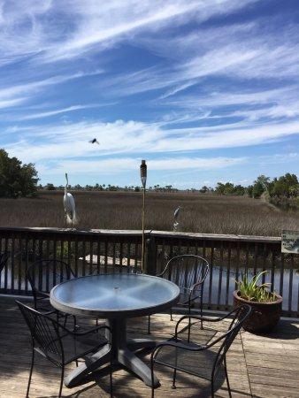 Spring Hill, FL: photo1.jpg