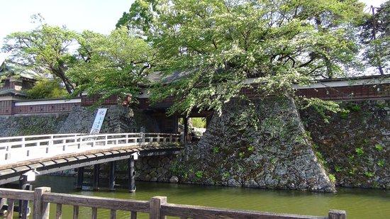 Takashima Castle: 堀と橋