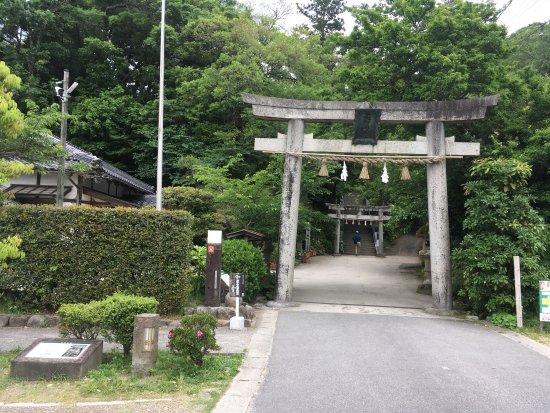 Tamatsukuriyu Shrine : photo4.jpg