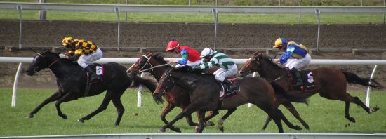 Pukekohe, Nova Zelândia: Day at the races