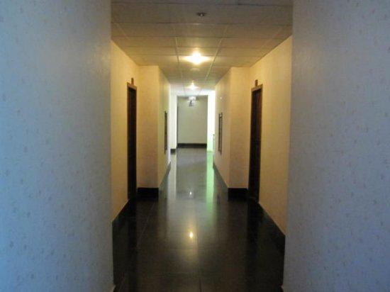 Parklane Hotel: 廊下です