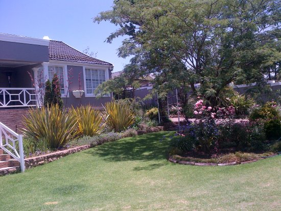 Kokstad, South Africa: View Of The Front Gardens