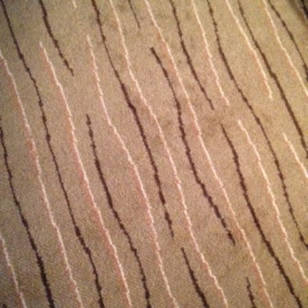 Scarborough, Australia: The carpets seemed rather old & dated