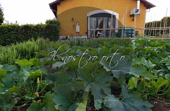 Fiano Romano, Italia: L'orto a km0