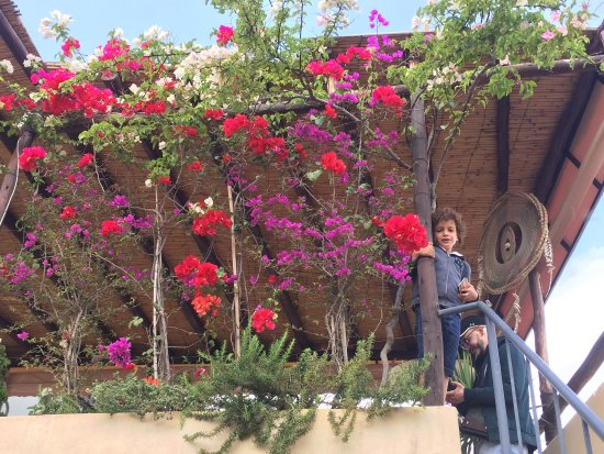 Riad Anata: photo0.jpg
