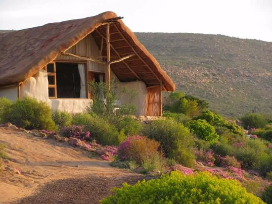 Cederberg, South Africa: Cottages surrounded by flower after winter rains