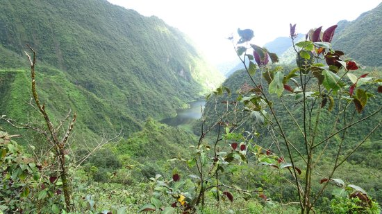 Arue, Französisch-Polynesien: Lac Vaihira
