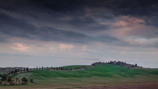 Asciano, Italien: lugar idilico para poder recorrer en coche en familia, solitario...