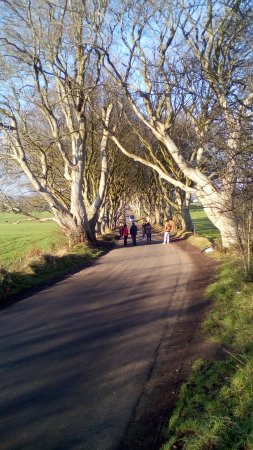 ‪‪Antrim‬, UK: The Dark Hedges - Game of Thrones HBO Productions‬
