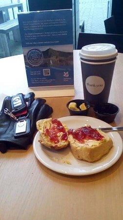 Antrim, UK: Tea Break at The Giant Causeway - Unescorted World Heritage Site