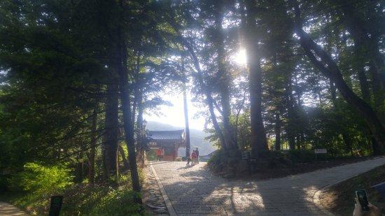 Pyeongchang-gun, Corea del Sur: temple5