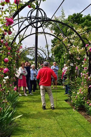 Attleborough, UK: Garden tours are available throughout the year. For more information visit  www.classicroses.co.
