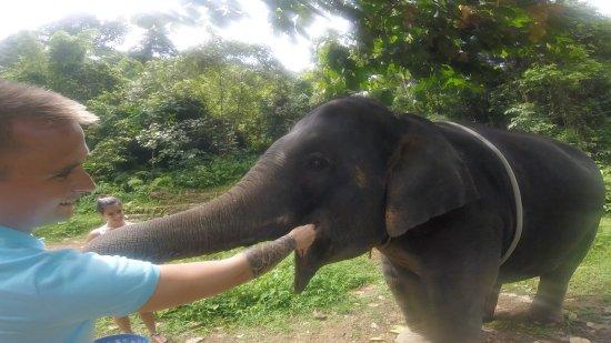 Phang Nga, Thailand: So scary but so amazing