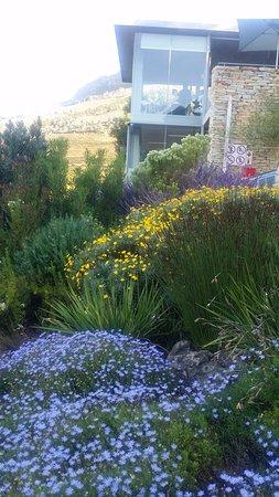 Constantia, Sudáfrica: Beautiful gardens