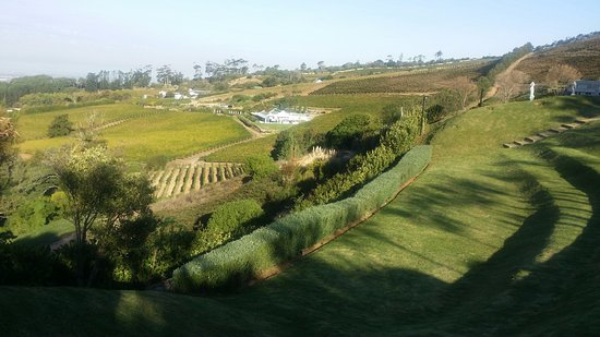 Constantia, Sudáfrica: Open Areas
