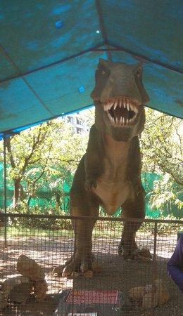 Tikuji-ni-wadi: Dinosaur park