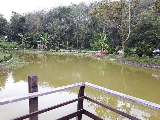 Bentong, Malasia: 20170524_170740_large.jpg