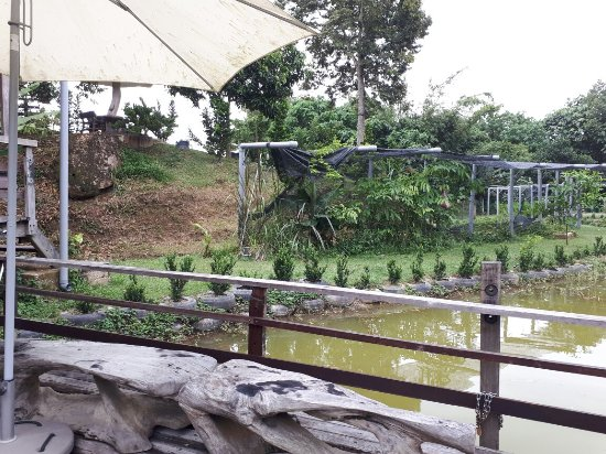 Bentong, Malasia: 20170524_170810_large.jpg