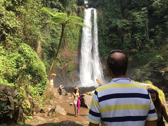Lovina Beach, إندونيسيا: GitGit waterfall with a client.