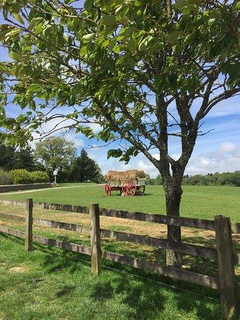 St Austell, UK: open pastures