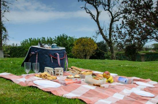 Tavistock, UK: Picnic lunch on the lawn