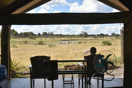 The Hide: The tent room's porch is facing the water hole
