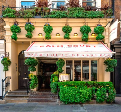 Palm Court Brasserie Photo