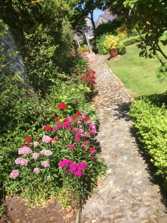 Churchbank Bed and Breakfast : The Garden Path