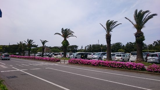 Futtsu, Japan: DSC_0312_large.jpg