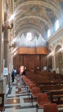 Cattedrale di San Gerardo: La volta e l'organo