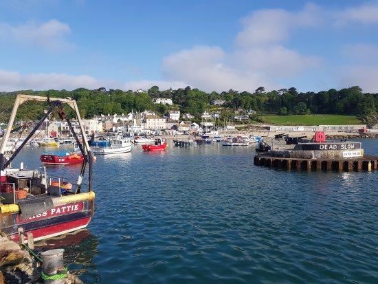 Lyme Regis, UK: 20170524_074453_large.jpg