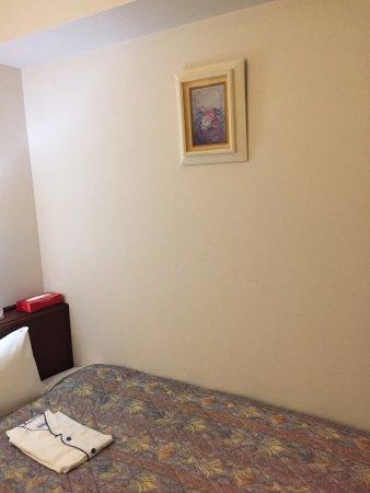 Fuchu, اليابان: 府中第一ホテル