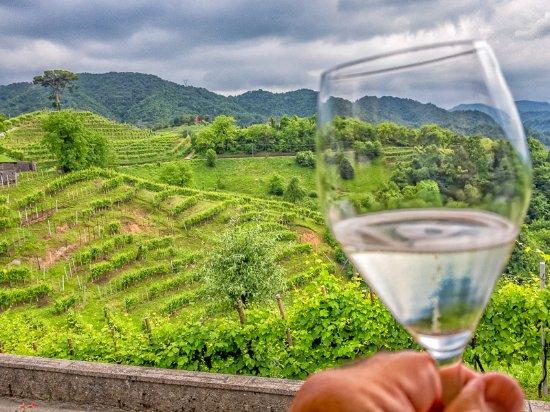Cison Di Valmarino, Italy: A toast from the terrace of ristorante da Andreetta