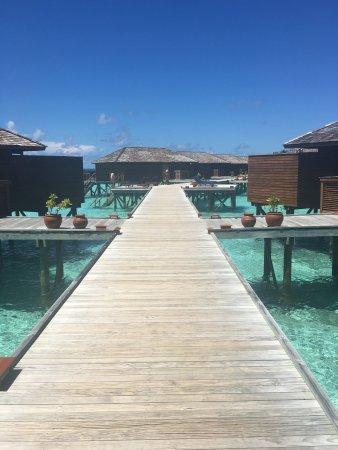 Vilamendhoo Island Resort & Spa: photo6.jpg
