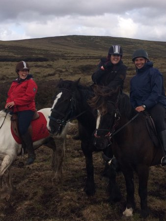 Wicklow, İrlanda: Hollywood Horse and Pony Trekking Centre