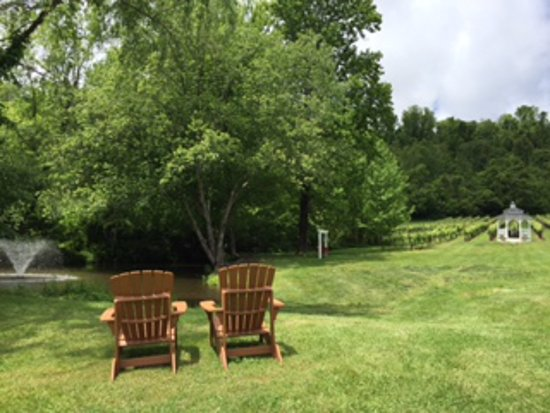 Lovingston, VA: Cozy spot to relax:  overlooking the pond with fountain, the gazebo, the new swing, and the vine