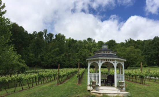 Lovingston, VA: Our one-acre active vineyard is growing Petit Manseng!