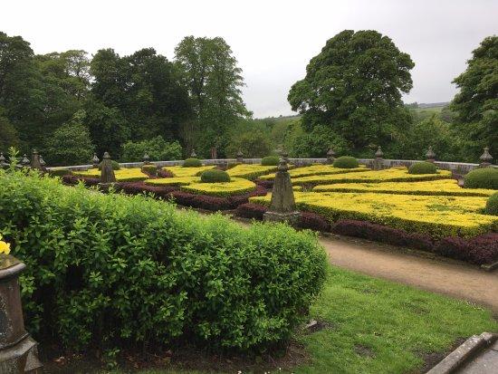 Padiham, UK: the garden
