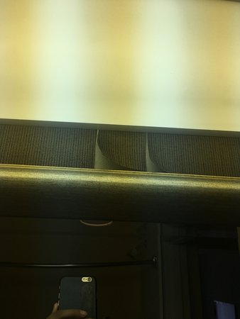 Alpharetta, GA: Wallpaper peeling from mildewy moisture