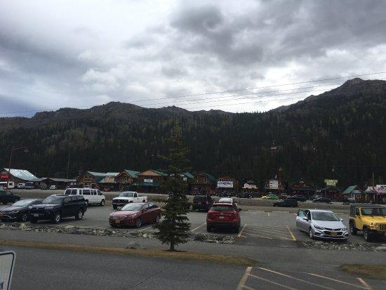 Denali Princess Wilderness Lodge: photo1.jpg