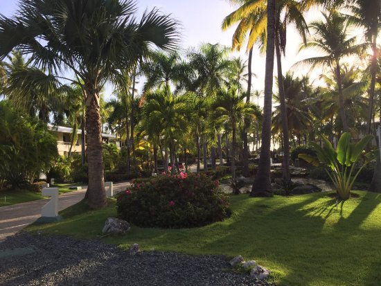Paradisus Punta Cana Resort: photo9.jpg