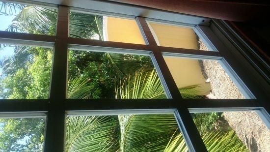 Maison Tulum: IMG-20170509-WA0010_large.jpg