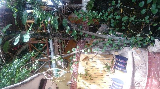 Maison Tulum: DSC_0055_large.jpg