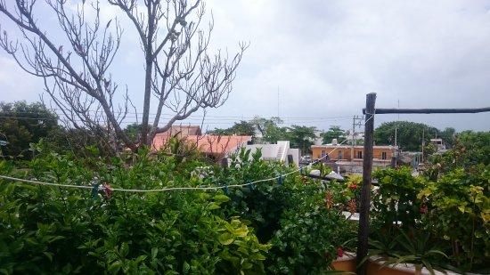 Maison Tulum: DSC_0309_large.jpg