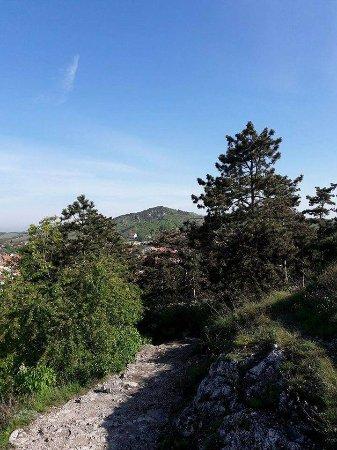 Mikulov, Czech Republic: cesta dolů