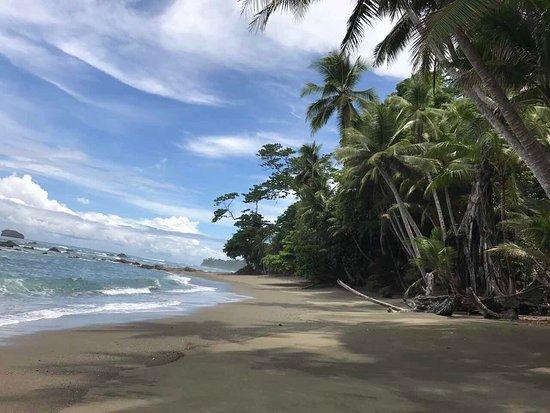 Puerto Jimenez, Costa Rica: Along coast near Sirena