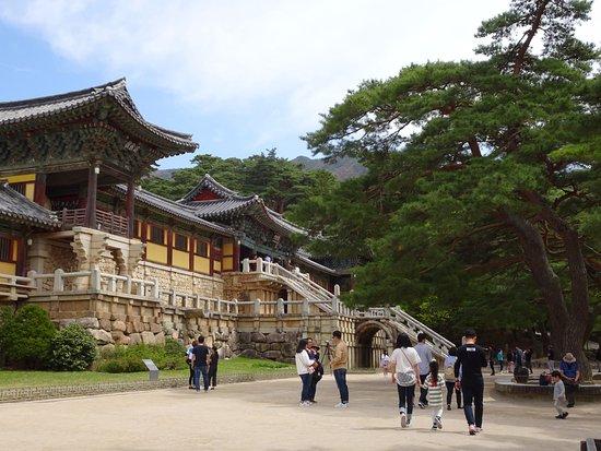 Gyeongju, Güney Kore: La clásica foto del lugar